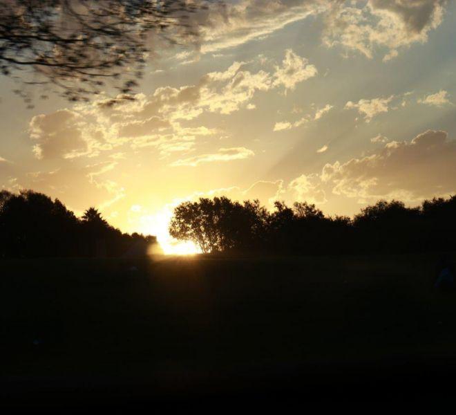 Sunsets (4)